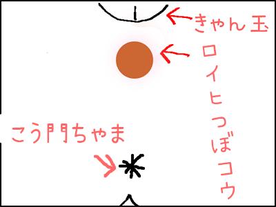 会陰部イラスト